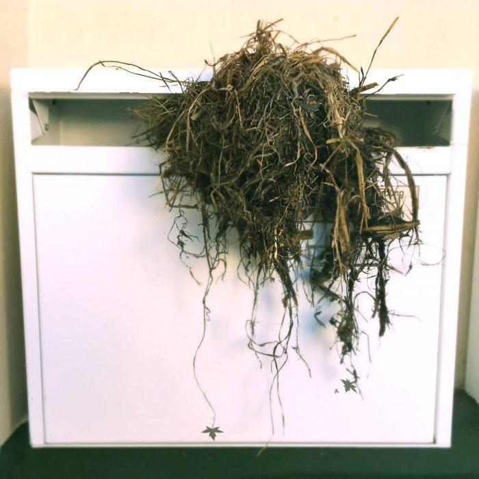 Biomüll im Briefkasten